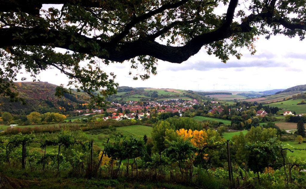 Blick auf Odernheim am Glan vom Disibodenberg