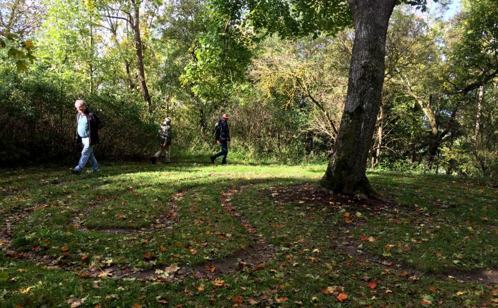 Labyrinth, Disibodenberg,